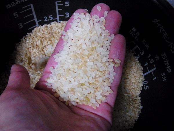 白米2:玄米1